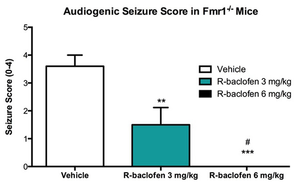Audiogenic seizure score in Fmr1 KO mice is reduced with R-baclofen treatment.