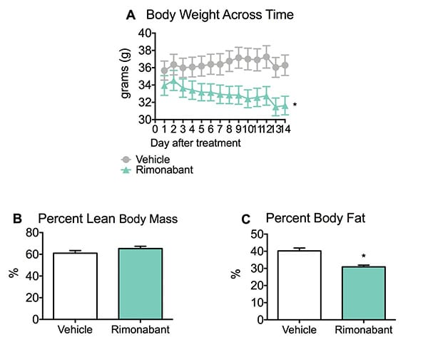 Body weight, percent lean body mass and percent body fat of mice fed a high-fat diet and treated with Rimonabant.