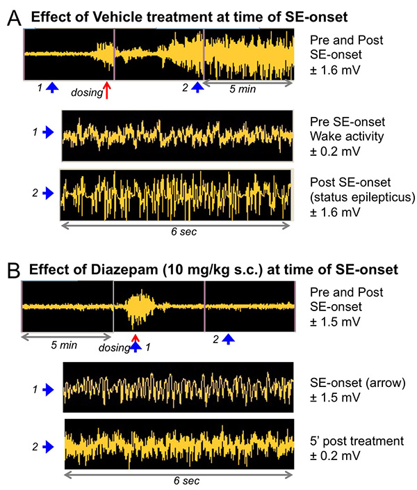 The effect diazepam on the mean integrated EEG power pre- and post- SE onset.