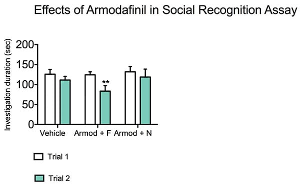 Armodafinil treated reduces investigation duration in response to a familiar rat during the social recognition test.