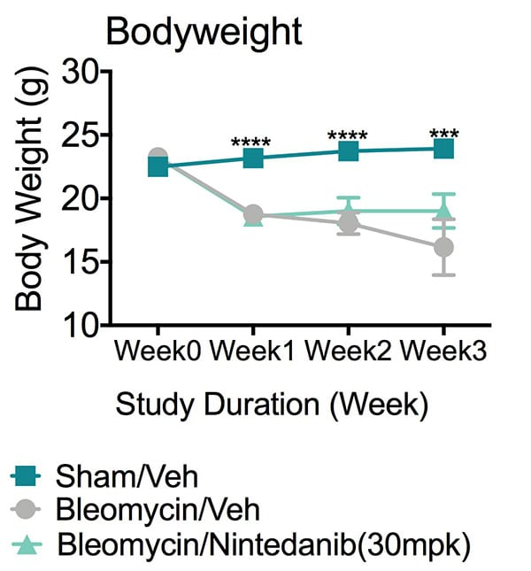 Graph of Body weight vs Study duration shows animals of Bleomycin/vehicle group showed significantly reduced body weights since week 1