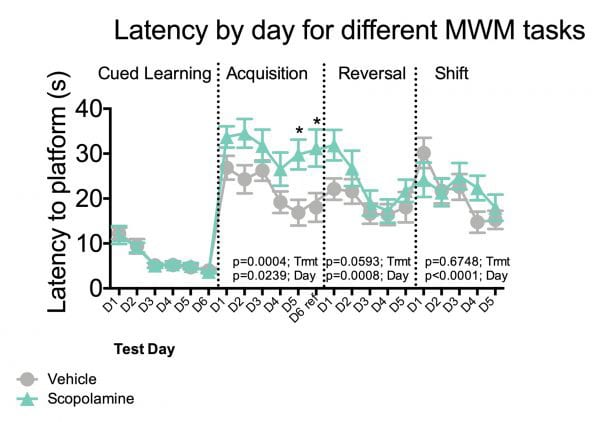 Latency to platform during cued learning, acquisition, reversal and shift phases of the morris water maze test.