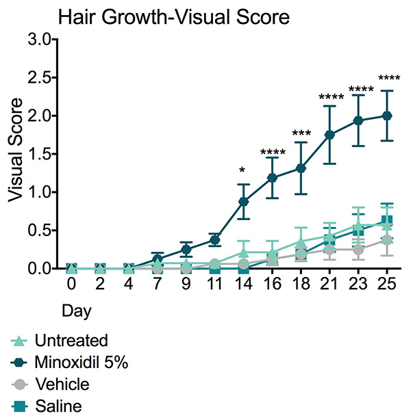 Visual hair growth score following treatment with Minoxidil 5% or vehicle control.