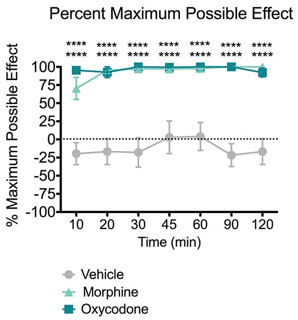 Tail withdraw latency of mice treated with morphine or oxycodone during the tail immersion test.