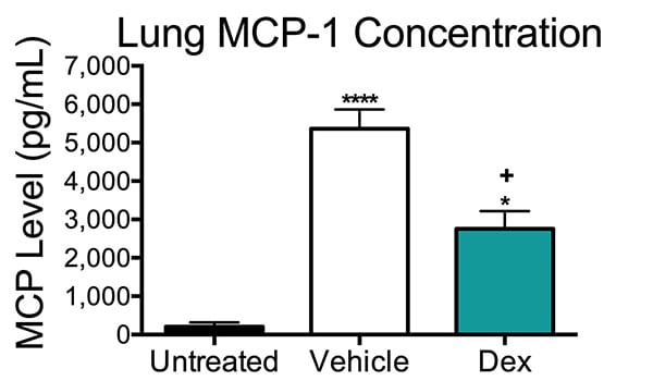 Concentration of MCP-1 in the lungs of control, vehicle-treated and dexamethosone-treated mice in a pulmonary allergic asthma model.