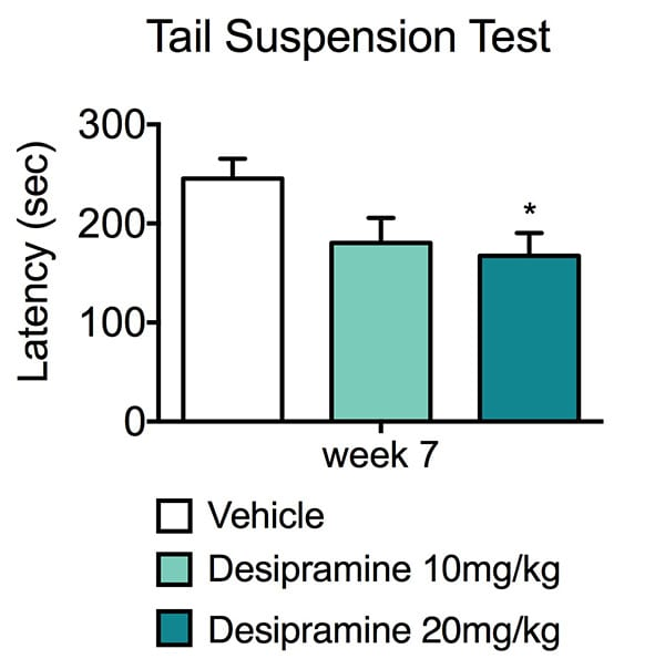 Latency until first extended immobility in vehicle and desipramine treated animals during the tail suspension test.