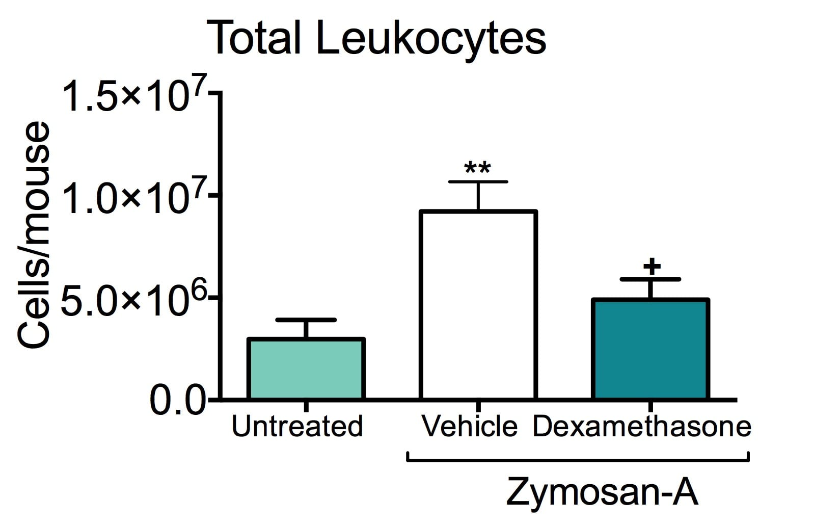 Total number of leukocytes in the peritoneum of untreated and zymosan-a treated mice with or without dexamethosone treatment.