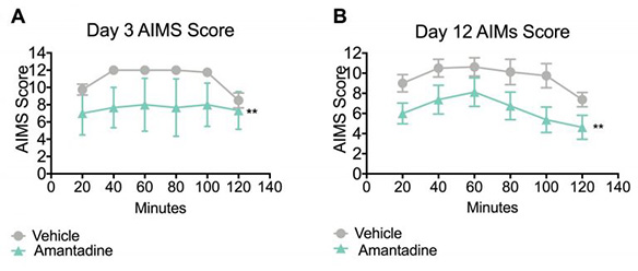 Abnormal involuntary score of amantadine treated rats on day 3 and day 12 in the L-DOPA induced dyskinesia model.