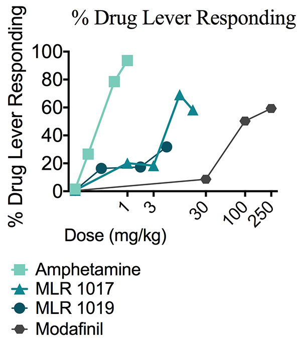 Percentage of drug lever responding animals to increasing doses of amphetamine, MLR-1017, MLR-1019 or Modafinil during a drug discrimination study.