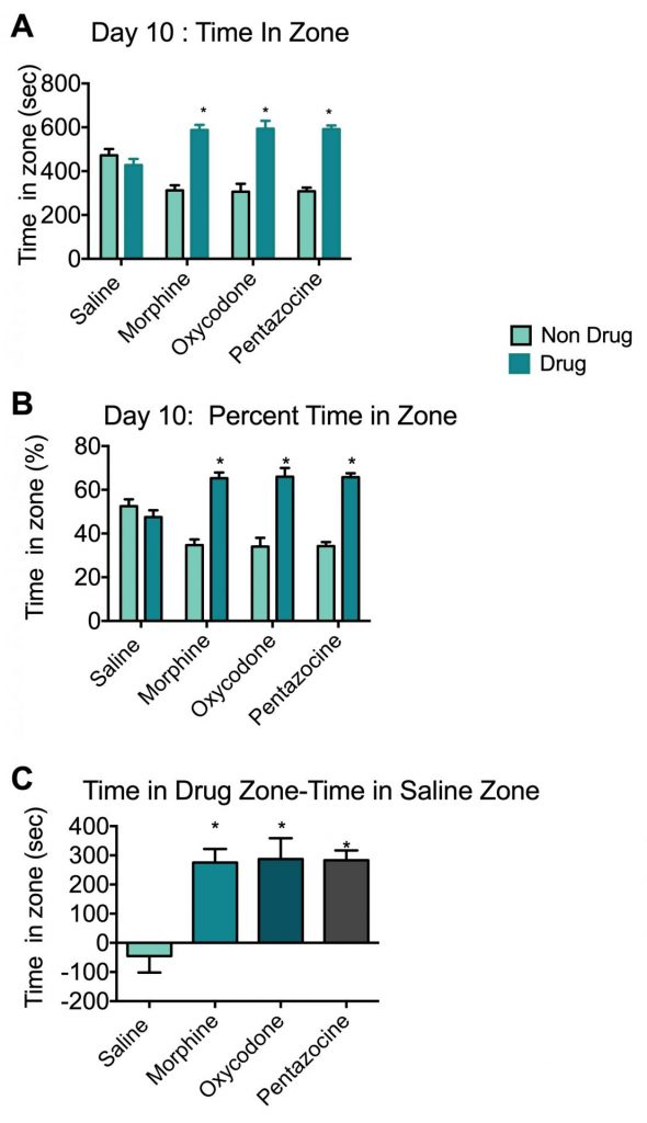 Time spent by animals in saline, morphine, oxycodone or pentazocine chambers during the conditioned place preference model.